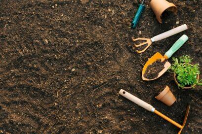 Les éco-gestes des activités en plein air : 1er épisode – le jardinage