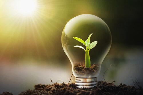 2020 : Les énergies renouvelables l'emportent sur les combustibles fossiles en Europe.