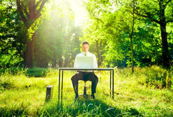 Un lieu de travail écologique : comment faire !